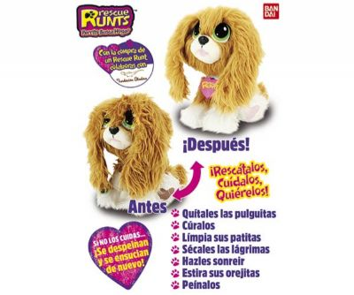 RESCUE RUNTS SPANIEL